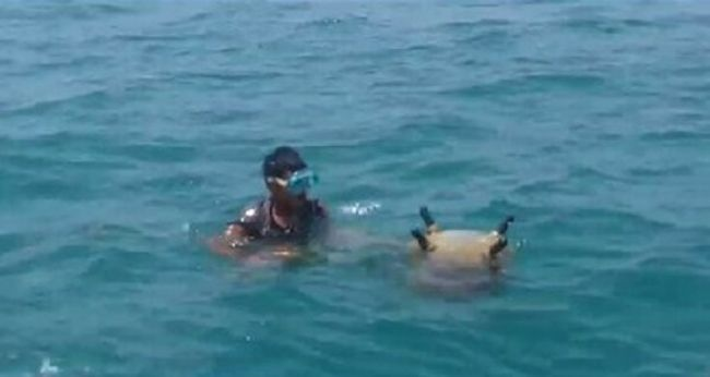 القوات البحرية اليمنية تعثر على ألغام بحرية جديدة قبالة سواحل ميدى