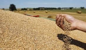 تخصيص 200 مليار دينار كقروض ميسرة للفلاحين والمزارعين