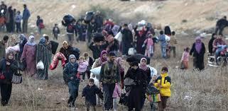 هولندا تبدي قلقها لتواجد  80 طفلا هولنديا يعيشون في العراق وسوريا