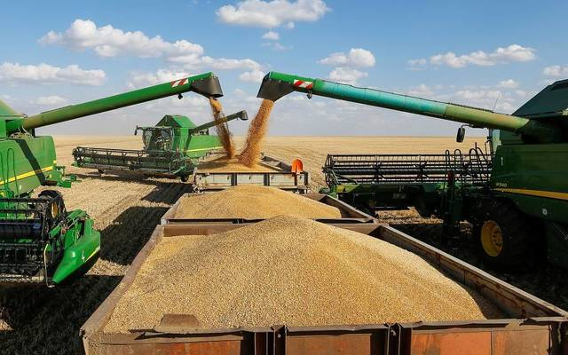 التجارة تتخذ اجراءات سريعة لحل مشاكل تسويق الحنطة