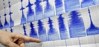 زلزال بقوة 4.6 درجات يضرب جنوب غرب إيران