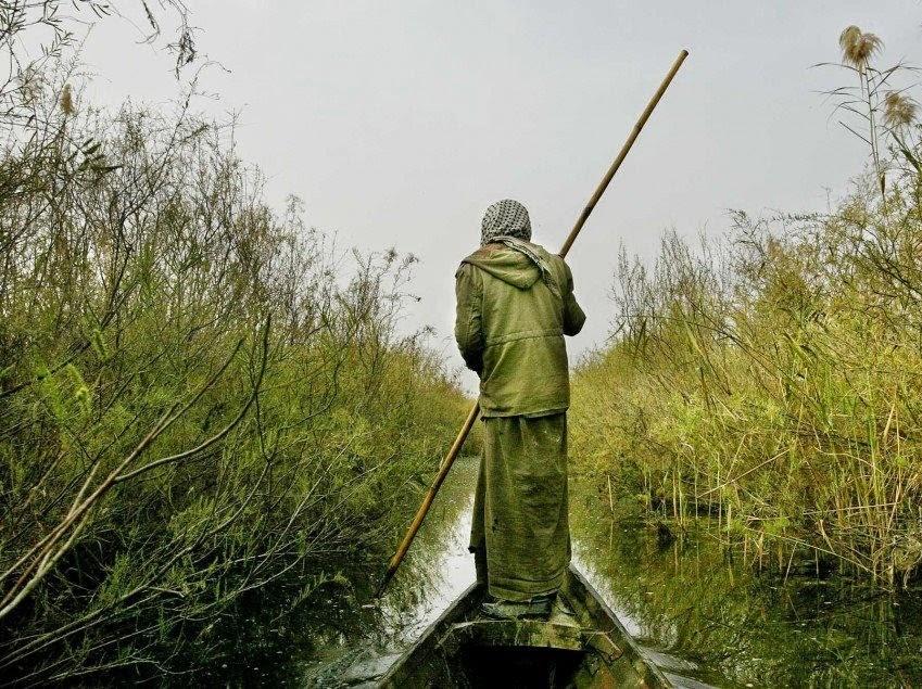 الاتفاق على آلية لحماية النظام الايكولوجي لاهوار العراق
