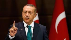 أردوغان: نسعى لحل مع الشعب السوري وليس الحكومة