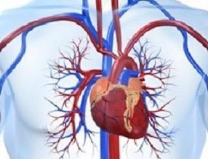 هل تعلم أن تعاطي المنشطات يتسبب فى الإصابة بشيخوخة القلب ؟؟