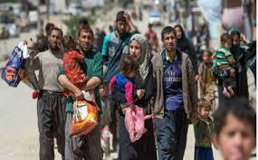 عودة 200 عائلة نازحة إلى قضاء بيجي