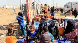 30% من نازحين اقليم كوردستان عادوا إلى مناطقهم المحررة