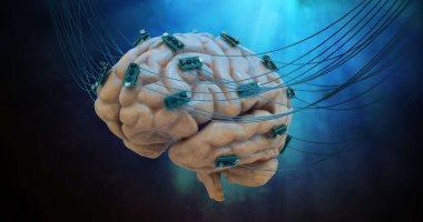 علماء ينجحون فى ربط الدماغ البشرى بالإنترنت