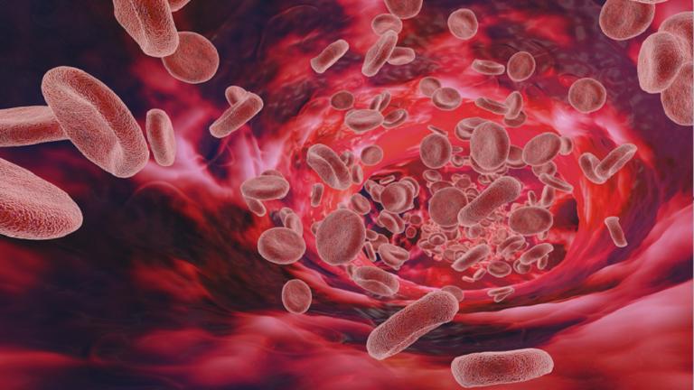 خمسة طرق يمكن من خلالها تعزيز الجهاز المناعي أثناء جائحة كورونا