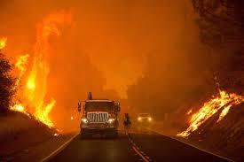 29 قتيلاً و228 مفقودا اثرحرائق كاليفورنيا