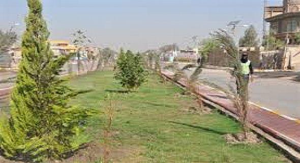 انطلاق الموسم الزراعي الربيعي للمتنزهات والحدائق العامة