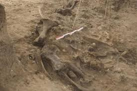 كشف مكان وجود الإنسان الأول قبل 700 ألف سنة