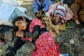 القضائية تتلقى أكثر من 5 الاف إخبار منذ منتصف 2015 بشأن الجرائم المرتكبة ضدّ المكوّن الايزيدي في محافظة نينوى