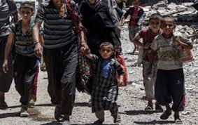 بسبب ازمة الجفاف ..  نزوح أكثر من 2000 عائلة من مختلف مناطق ذي قار