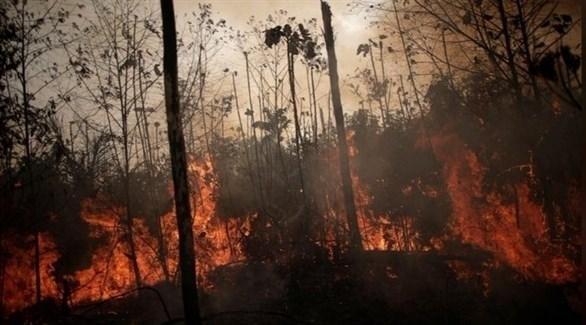 """البرازيل تستعين بالجيش في """"كارثة الأمازون"""""""