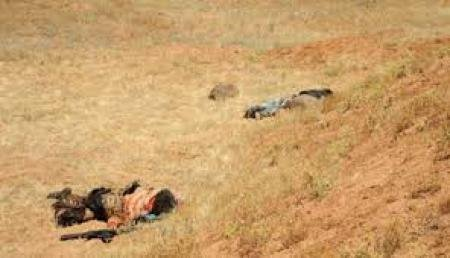 مقتل 3 عناصر من داعش جنوب جزيرة الخالدية