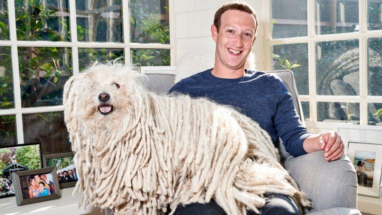 """تعرف على العلاقة بين كلب مارك و """"واتساب"""""""