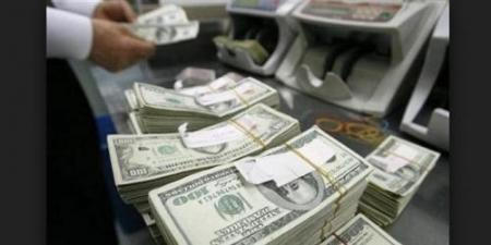 Shammari warns of mafias working to pull the dollar from the central bank bills forged