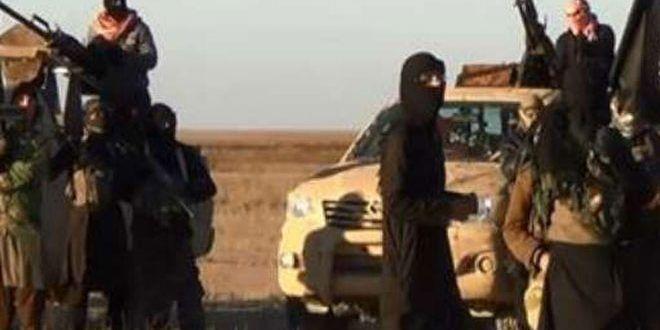 """بدء  إخلاء عاجل لعشرات من عوائل مسلحي تنظيم """"داعش"""""""