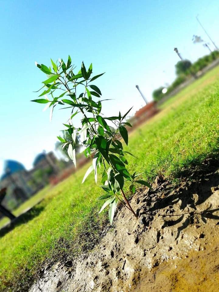 افتتاح متنزه سومر العائلي شرق بغداد