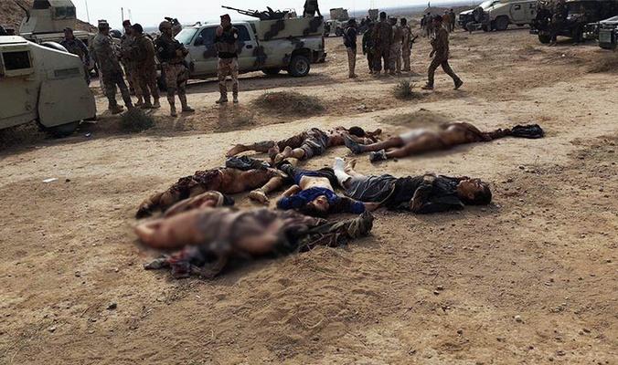 مقتل 8 عناصر تابعين لداعش في الأنبار
