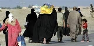 عودة 100 اسرة نازحة من مخيمات النازحينالى مناطق سكناهم شرقي الرمادي