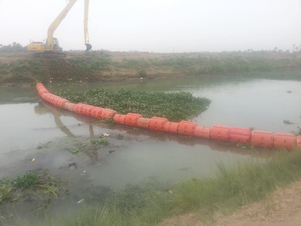 الحكومة تصرف  500 مليون دينار لإزالة زهرة النيل من حوض نهري دجلة والفرات