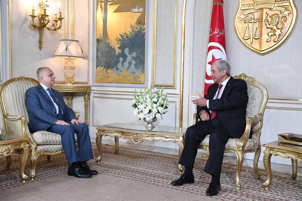 وزير الخارجية يلتقي الرئيس التونسي