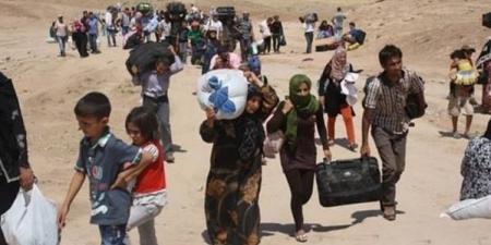 الهجرة توزع 81 الف حصة اغاثية للاسر النازحة