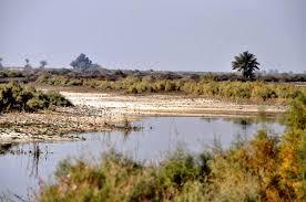 الموارد المائية تبحث حصص المحافظات الجنوبية ومحاسبة المتجاوزين