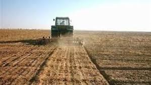 خطة لزيادة الاستصلاح الزراعي في بادية المثنى