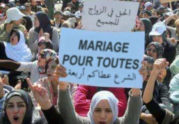 للعوانس .. وقفة نسائية احتجاجية أمام البرلمان للمطالبة بتعدّد الزّوجات