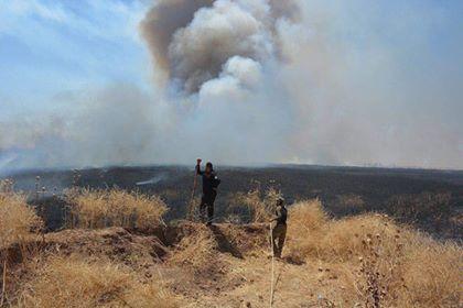 الحشد الشعبي يخمد حريقا كبيرا في خانقين
