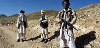 التايمز: طالبان تبحث عن دعم أمريكي في قتالها مع تنظيم داعش